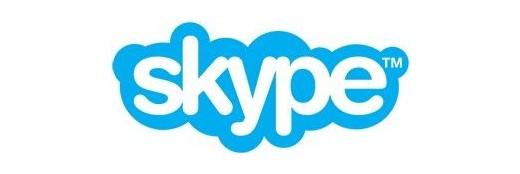 라드유학미술원 skype 온라인 수업